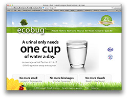 Website design and development for Ecobug environmentally friendly effective cleaning products